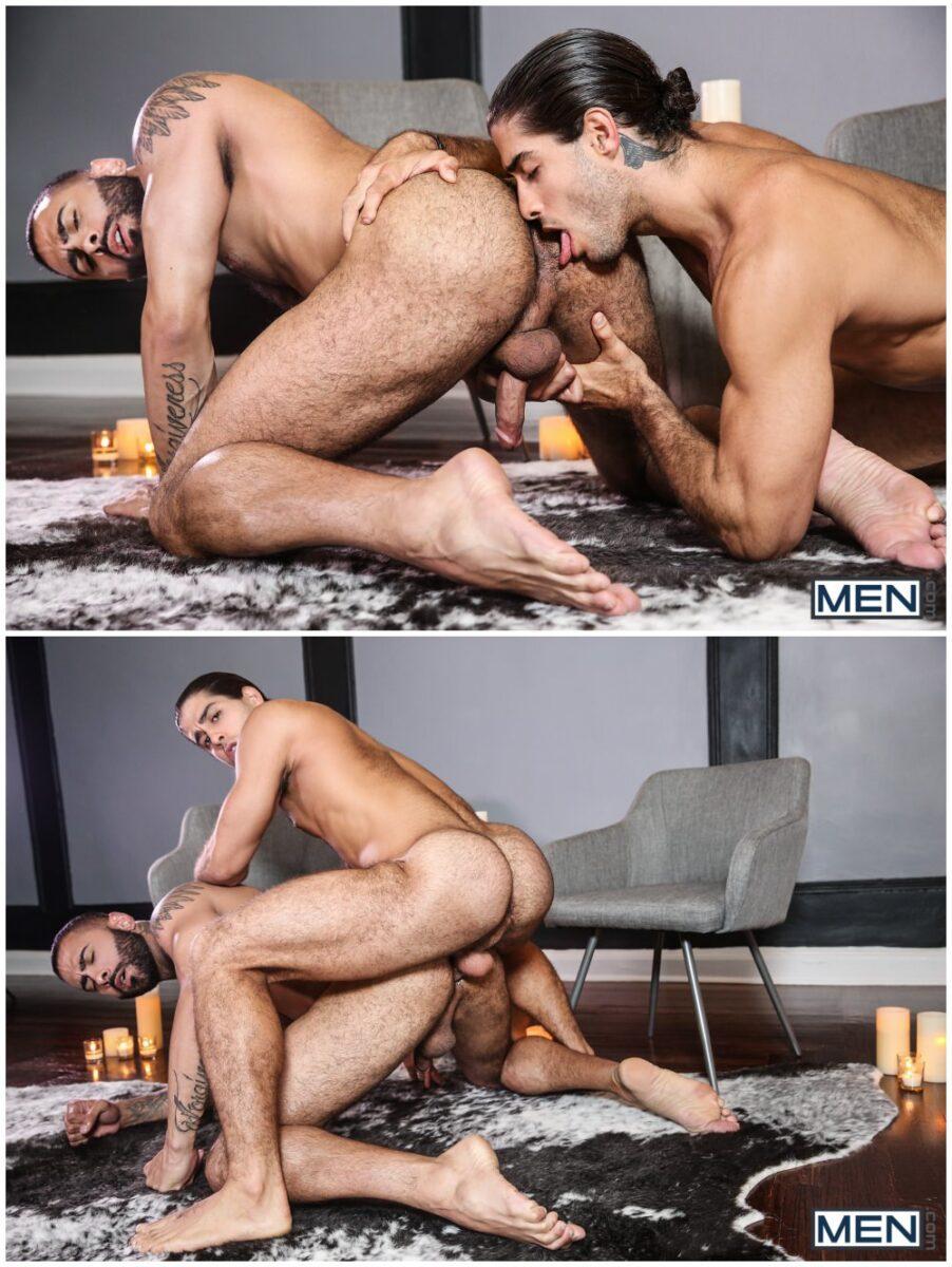 Men fucking cowws porn films