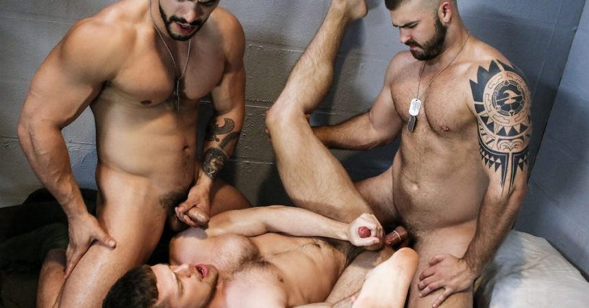 Three muscle studs